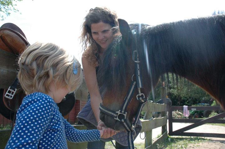 Pferde streicheln, füttern, reiten