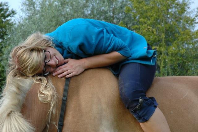 Eintauchen in die Welt der Pferde, Hängebauchschweine und Zackelschafe