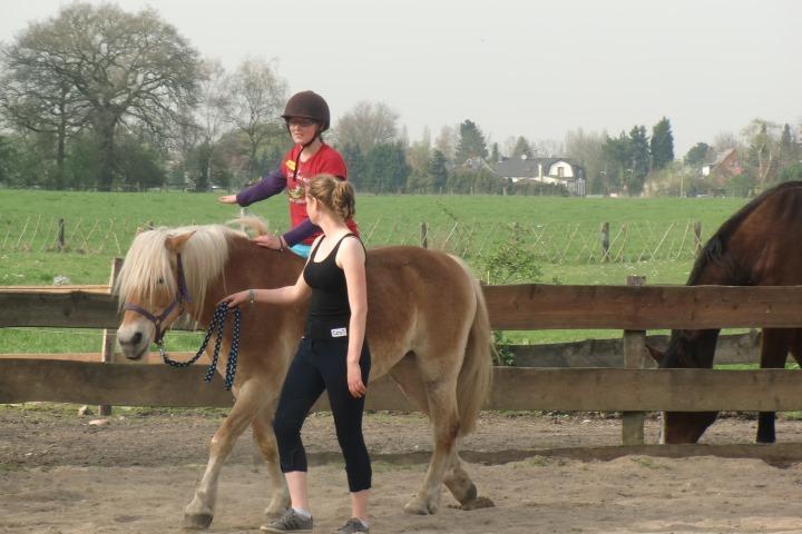 Auf Ponys reiten