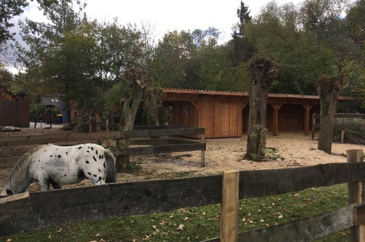 Der neue Pferdestall